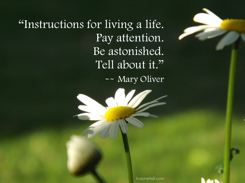 Mary Oliver Quote Instructions For Living A Life