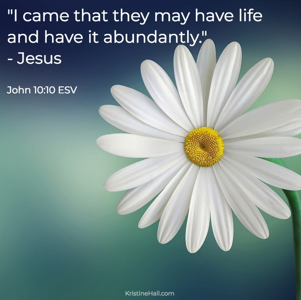 "John 10:10 ""I came that they may have life and have it abundantly."""